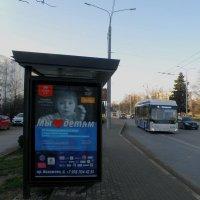 Старое и новое :: Александр Рыжов