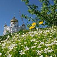 Белогорская весна... :: Сергей Иваныч