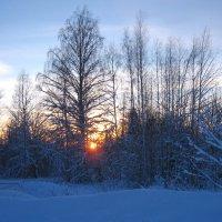 Зимний закат :: Ольга Попова (popova/j2011)