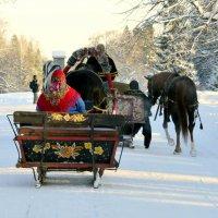 В парке зимой  4 :: Сергей