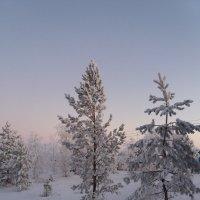 вечер зимний :: игорь