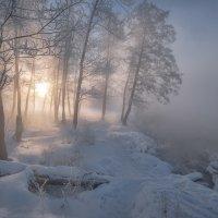 Морозный туман :: Fuseboy