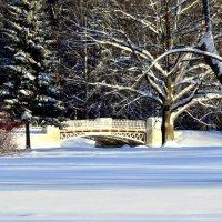 В зимнем парке  2 :: Сергей