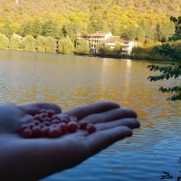 на озере Лопото :: Лариса Батурова