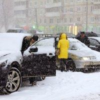 Московский снегопад :: Александр