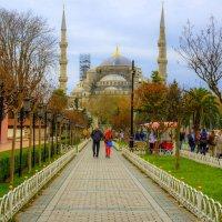 Стамбул* :: ФотоЛюбка *