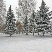 Зимний сон :: Liliya Kharlamova