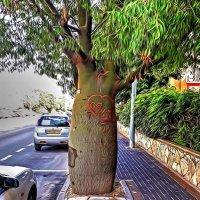 чуднЫе деревья :: Александр Корчемный