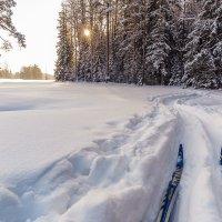 Зимняя прогулка. :: Олег Бабурин