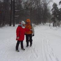 Ну, и где снегопад, которым пугали? :: Андрей Лукьянов