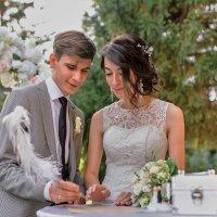 Ах,эта свадьба! :: Венера Чуйкова