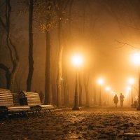 Туманный вечер в киеве :: Алексей Савченко