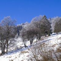 во Франции также есть снег :: Георгий А