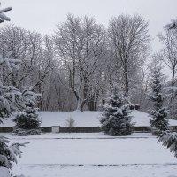 Зимние картинки Южного парка :: Маргарита Батырева