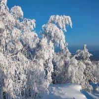 Белоснежная зима :: vladimir Bormotov