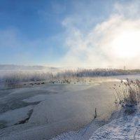 В поисках чистой воды :: vladimir Bormotov