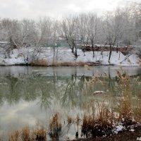 Январь в парке Октября :: Нина Бутко