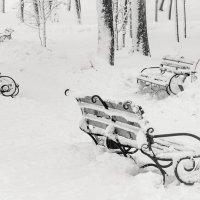"""Из серии """"Зима в городе""""... :: Виктория"""