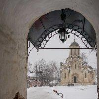 Холодный день :: Галина Бехметьева
