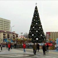 Краснодар. Главная новогодняя ёлка на Театральной площади :: Татьяна Смоляниченко