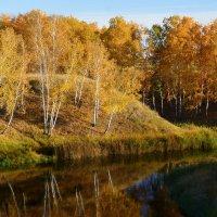 Осень :: Геннадий Супрун