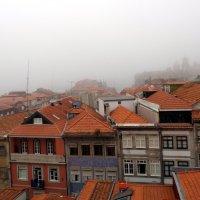 Туманное утро в Порто :: Лара Амелина