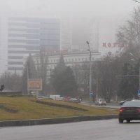 Туманная зима :: Александр Скамо