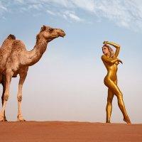 Desert Gold :: E.Balin Е.Балин