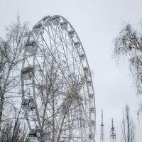 Два колеса. Сделай свой выбор. :: Олег Манаенков