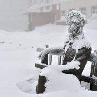 Присядь дружище рядом - поболтаем о погоде... :: Витас Бенета