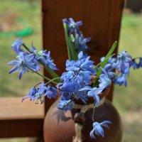 Начало весны :: Людмила