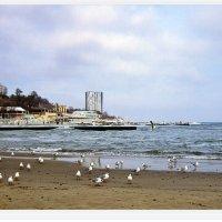 Зимний пляж :: Людмила