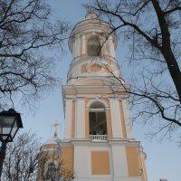 Князь-Владимирский собор :: Таэлюр
