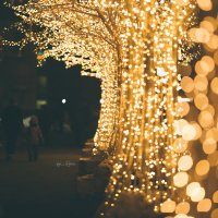 я оставлю только свет :: Vnyk_s_Ryblevku Абренин