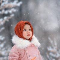 Удивительная зима и ее обитатели :: Татьяна Скородумова