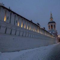 Стена Донскова монастыря :: Яков Реймер