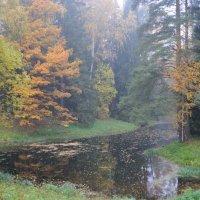 в осеннем парке... #17 :: Андрей Вестмит