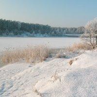 Замёрзший канал. :: Геннадий Порохов
