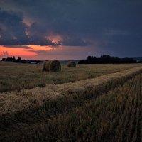 Рассвет в полях :: Валерий Талашов
