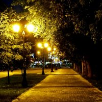 Ночные фонари :: Валентина *