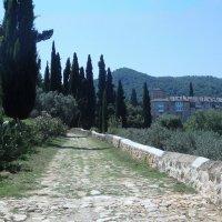 Впереди-монастырь :: ZNatasha -