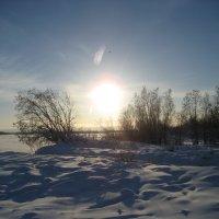 Зимний закат.Якутск :: Anna Ivanova