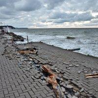 Последствия январского урагана в Светлогорске :: Марина