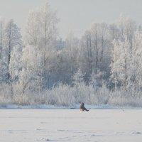 зимний пейзаж :: ИННА