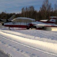 В снегу :: Павел Галактионов