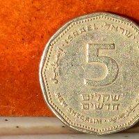 израильские шкалим. :: Пётр Беркун