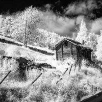 Норвегия :: Сергей Козинцев
