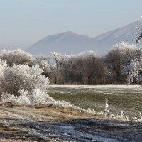 Зимний пейзаж :: - AVD -