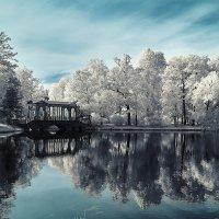 Pushkin infrared :: dp_tula