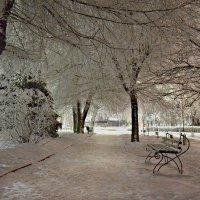 Зимний сквер :: ЛЮБОВЬ ВИТТ